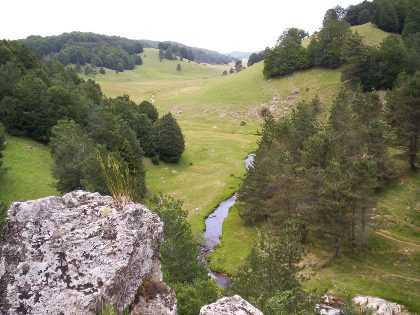 Parco Sila e Afor, intesa per tutelare il territorio