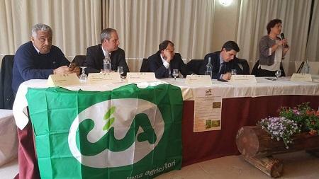 Castanicoltura Calabria tra problemi e prospettive Le produzioni si sono ridotte di circa il 90% negli ultimi anni