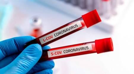 Coronavirus Calabria, oggi non ci sono nuovi positivi Il bollettino della Regione