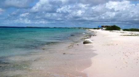 Spiaggia bollente in Calabria: una coppia sorpresa a fare sesso in spiaggia I due ultracinquantenni sono stati denunciati per atti osceni in luogo pubblico