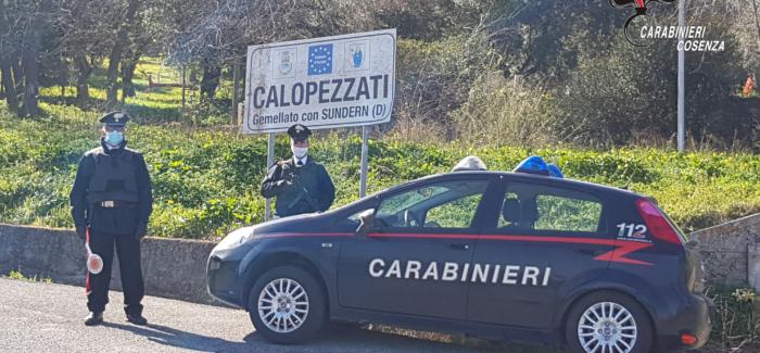 """Calopezzati (CS). Il cane """"Enno"""" trova 200 grammi di marijuana: padre e figlio arrestati dai carabinieri"""
