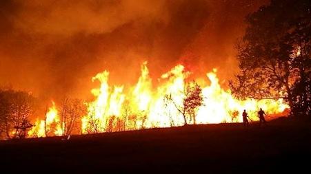 Un'altra vittima a causa degli incendi, trovato morto un anziano ad Acquaro L'uomo è stato trovato carbonizzato e sembra, cause ancora da accertare, che stesse tentando di spegnere un incendio